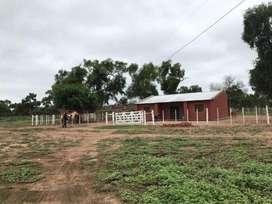 En Venta 8230 has ganaderas E.del Campo Formosa