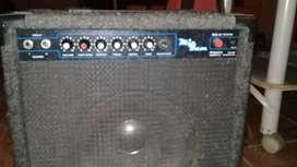 Amplificador con salida para 2 guitarras