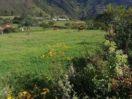 Lote ideal para zona de cultivo y turística