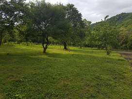 Hermoso terreno a 5000 mts del centro de Tafi viejo