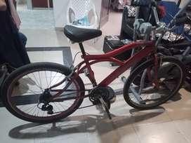 Bicicleta playera marco Shimano