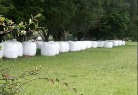 Henolaje de Avena-Vicia en Pacas de 750 kilos