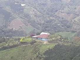 Acojedora finca 4 hectareas hermosa vista