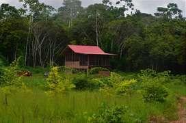 Fundó Agro forestal, con título de propiedad inscrito en Registros Públicos, a 20' de Puerto Maldonado, full acceso