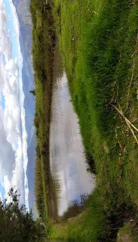 Terreno 6 hectáreas