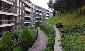 Jardinero para condominios y edificios.