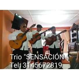 """""""SENSACIÓN""""; trio musical serenata"""