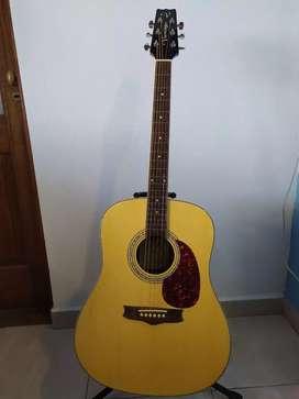 Guitarra Acústica Vantage by Samick + Funda Acolchada Semirígida
