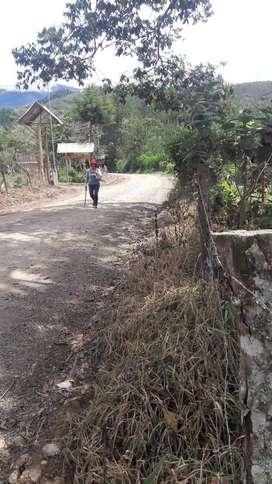 Vendo terreno en Oxapampa-Pasco