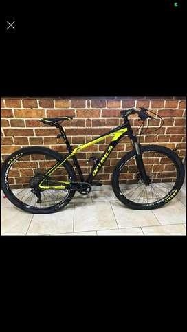 Bicicleta optimus en carbono