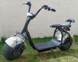 Citycoco scooter eléctrico varios colores