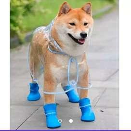 Zapatos para mascotas TALLA: M