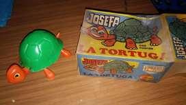 La tortuga Josefa
