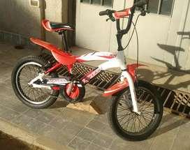 Bicicleta raleigh rod 16