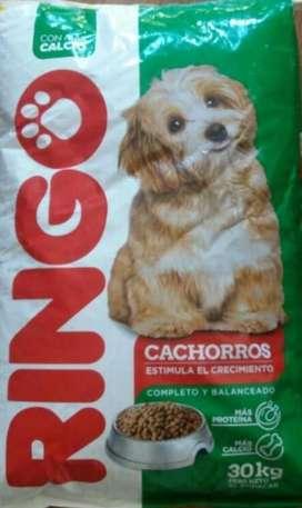 Ringo Cachorro 30kg