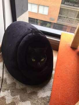 Cama Iglú para Gatos