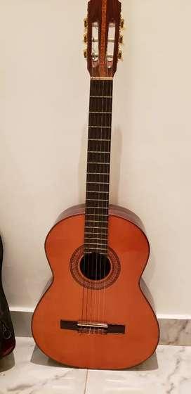 Vendo guitarra admira elvira excelente estado.