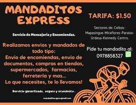 Servicio de Mensajeria y Encomiendas. MandaditosExpress