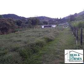 Lote En Venta Rionegro Antioquia Sector La Laja: Còdigo  903606