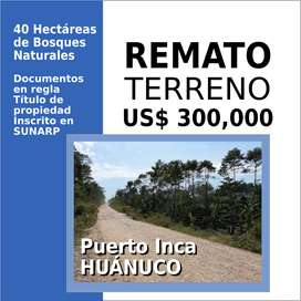 Remato 40 Hectáreas en Puerto Inca, Huánuco