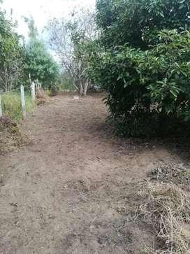 Vendo O Cambio Terreno en Guayllabamba