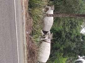 Tolvas para Camiones Mixer