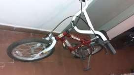 Bicicleta Enrique R 14