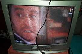 Vendo televisor de 29 + dvd con control