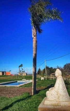 VENDO LOTE EN TIERRA ALTA 1 DE 15 x 41 MTS 617 M2 MANZANAL 35 LOTE 2.
