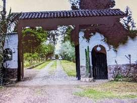 TERRENO DE 3 HECTAREAS EN PIFO/EXCELENTE UBICACION