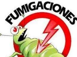 FUMIGACION DE PLAGAS LA LIDER C.A