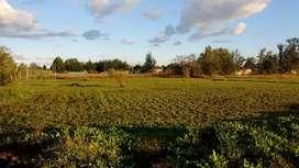 Vendo terreno en zona La Lonja Derqui .