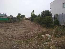 Vendo dos terrenos en parque sicardi