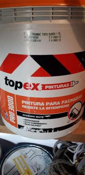 PINTURA TOPEX 1GL