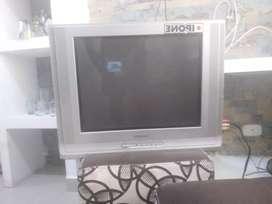 Televisor y nevera