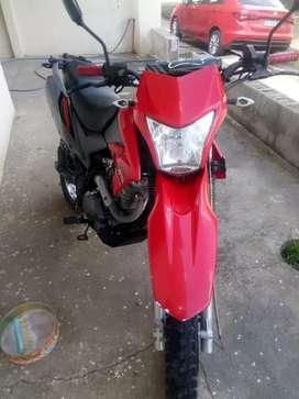 Vendo zr200