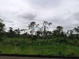 Venta de 28 hectáreas en SSFD