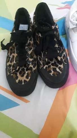 Zapatos animal pris
