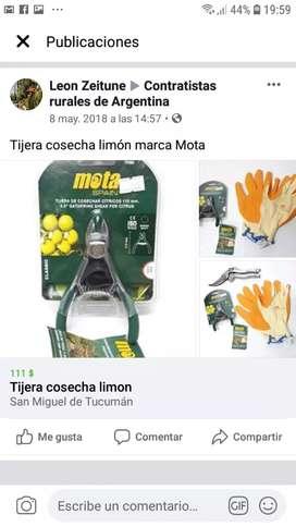 Tijera cosecha citrus