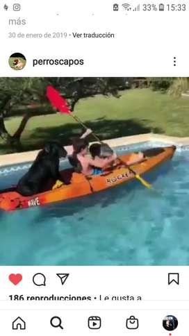kayak vendo