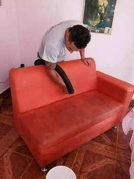 lavado muebles tapetes seco