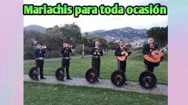 Mariachi Fiesta Mexicana te ofrece el mejor servicio garantizado