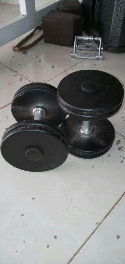 Mancuernas para Biceps 0