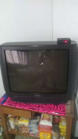 Vendo televisor Panasonic de 29 pulgadas