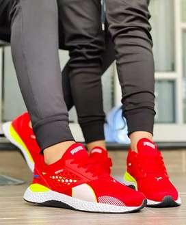 Zapato Tennis Deportivo Puma Unisex