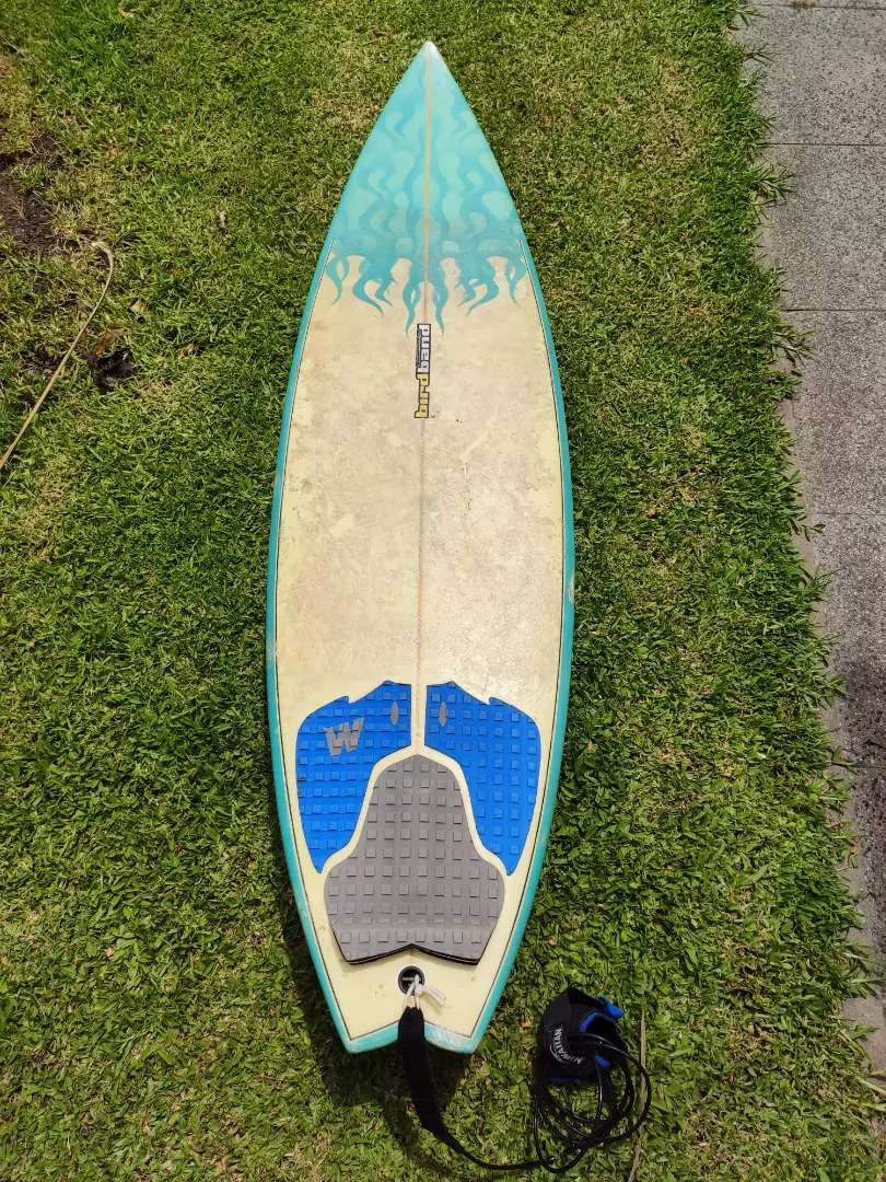 "Tabla de surf Bird Banda 5, 8"" 0"