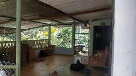 Parcela con cultivo de café y casa construida