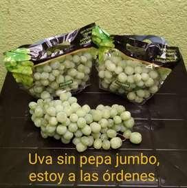Venta de uva verde Jumbo sin pepa