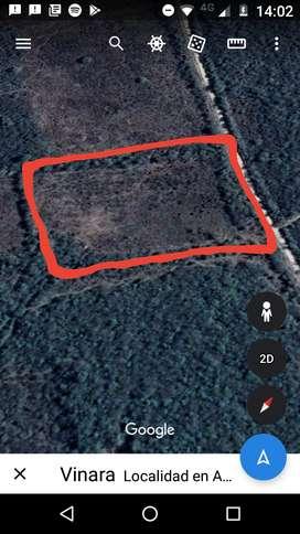 Vendo finca de 16 hectáreas y otro de 6 hectáreas en termas de Río hondo