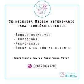 BUSCO MEDICO VETERINARIO PEQUENAS ESPECIES